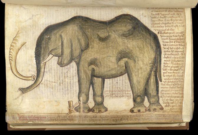 Manuscript depicting an elephant